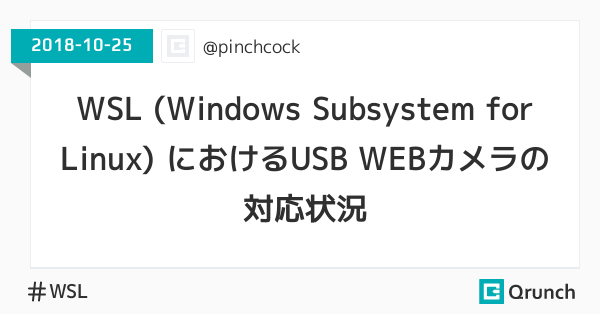 WSL (Windows Subsystem for Linux) におけるUSB WEBカメラの対応状況